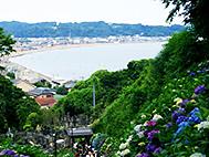 鎌倉陶芸村上工房の周辺風景・成就院